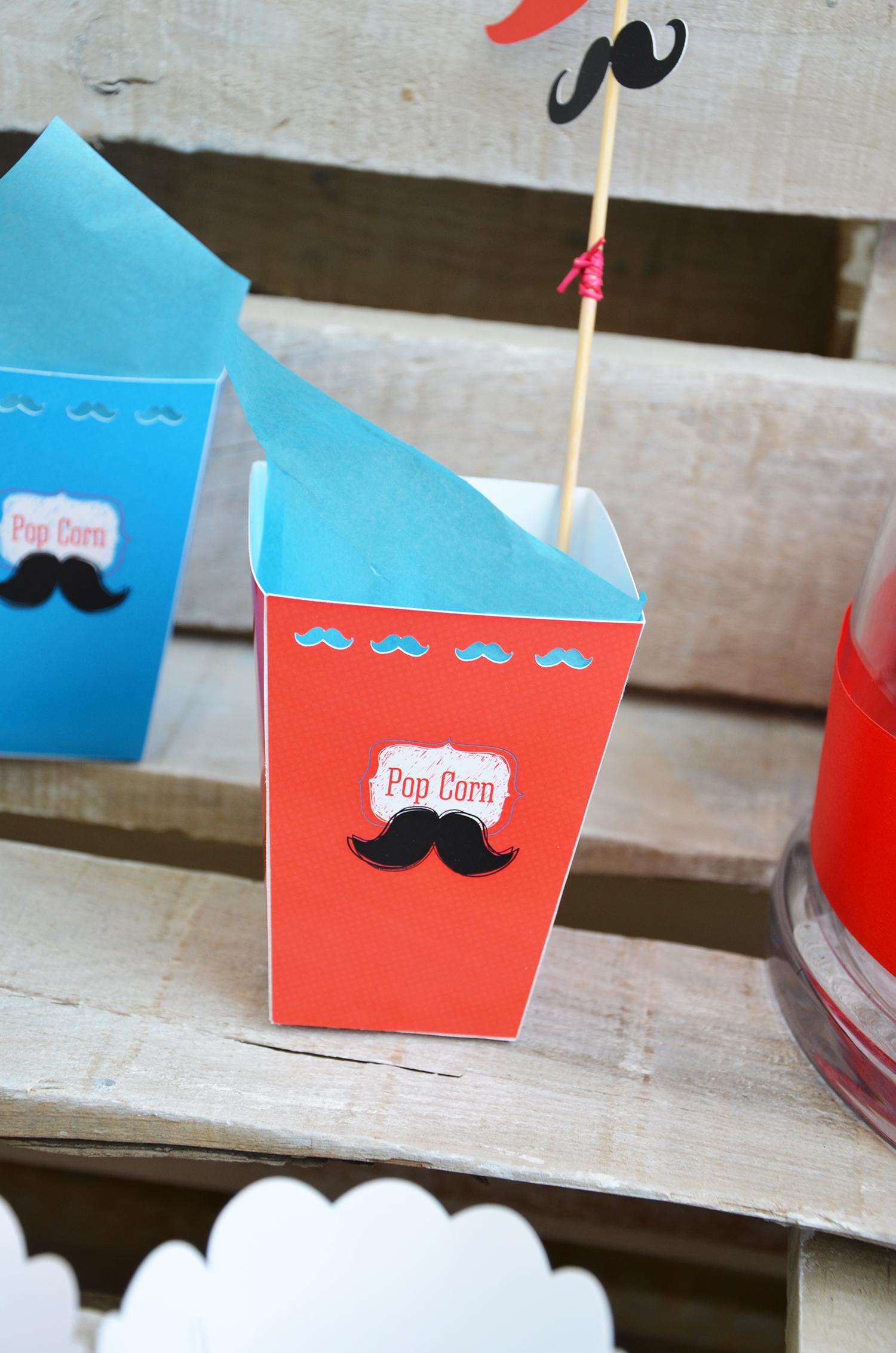 moustache (2)