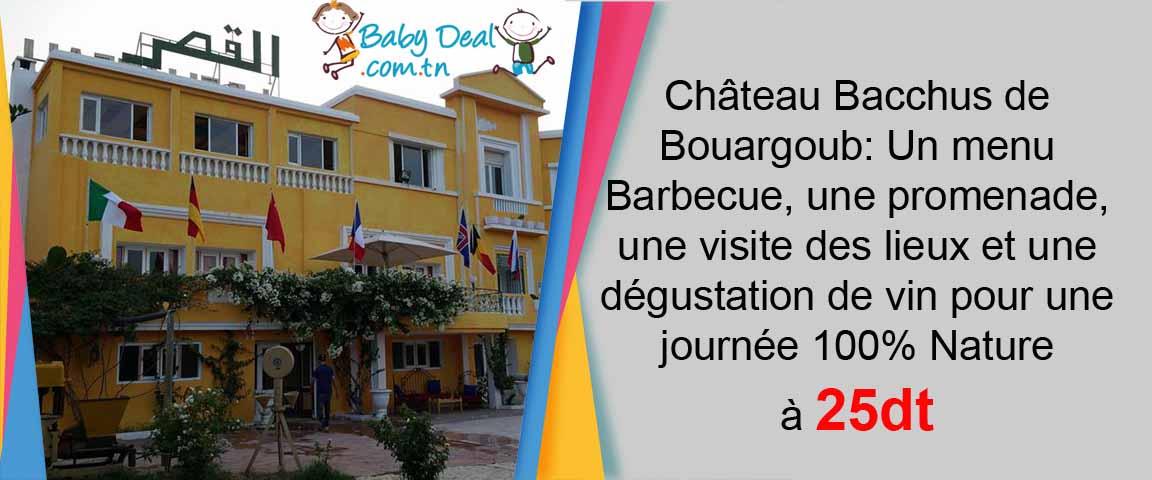 dejeuner-nature-chateau-babydealtn