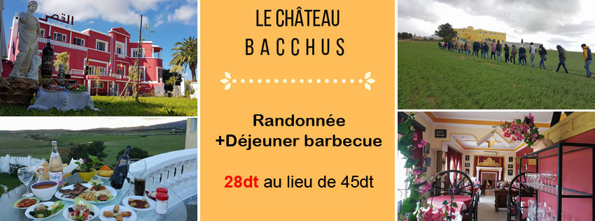 chateau-bacchus-babydeal-tunisie